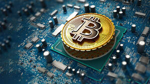 """Investment‑Experte: """"100% Bitcoin, 0% andere Krypto‑Assets"""""""