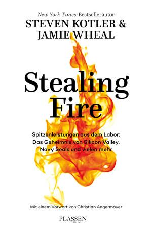 PLASSEN Buchverlage - Stealing Fire
