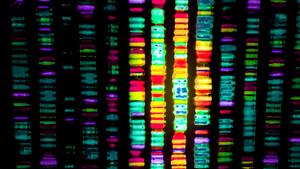 Die neue Illumina? AKTIONÄR‑Tipp 10x Genomics im Rallye‑Modus – lohnt jetzt noch der Einstieg?