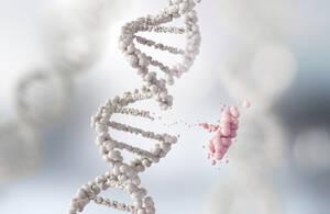 Vertex und CRISPR Therapeutics mit dem nächsten Top‑Deal: Darum könnte auch Bayer profitieren
