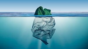 Kampf gegen Plastik: Frankreich greift durch – das sind die möglichen Gewinner  / Foto: Shutterstock