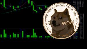 Diese Unterschiede zwischen Bitcoin und Dogecoin sollten Anleger kennen  / Foto: Shutterstock