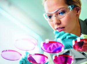 Bayer: Wichtiger Schritt – Termin voraus!