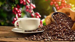 Kaffee‑Future: Mit Vollgas nach oben ausgebrochen!