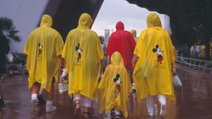 Walt Disney: Jetzt kommt es knüppeldick