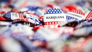 Hot‑Stock der Woche: Sieg für Cannabis