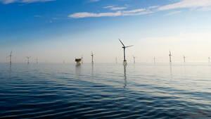 RWE: Hier tut sich was  / Foto: Shutterstock
