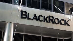 BlackRock: In der Krise liegt die Kraft