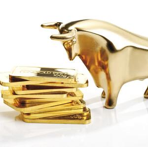 Finanz‑Fachleute: Gold ist die Hartwährung und Geld ist gefährlich  / Foto: Börsenmedien AG