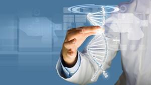 Sangamo: So geht es jetzt beim heißen Biotech‑Eisen weiter – CMO im Exklusiv‑Interview