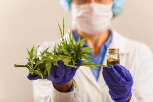Handelsverbot Cannabis‑Aktien: Chaos nimmt kein Ende  / Foto: Börsenmedien AG