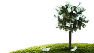 ProCredit: Die Bank mit Gewissen