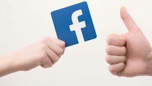 Facebook: Brüderlicher Zusammenschluss mit deutschen Medien  / Foto: Shutterstock
