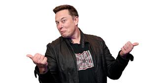 Bitcoin & Co: Musk lässt den DOGE raus